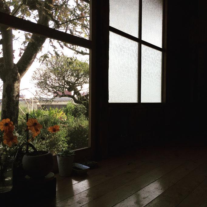 縁側のある生活、最高!この木枠の窓がいい。リノベでサッシとかにしないでね!