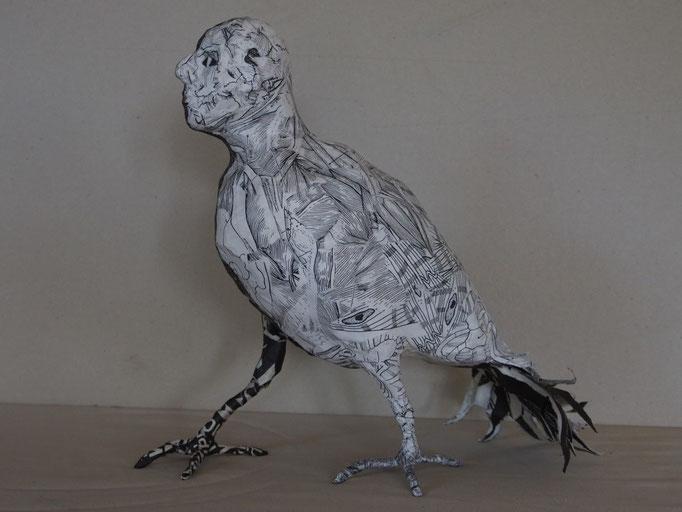 vogelmann