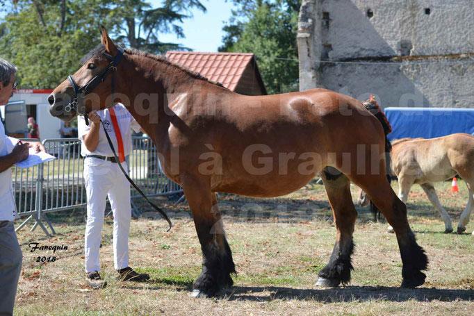 Fête du cheval à GRAULHET le 16 septembre 2018 - Concours Départemental de chevaux de traits - 56