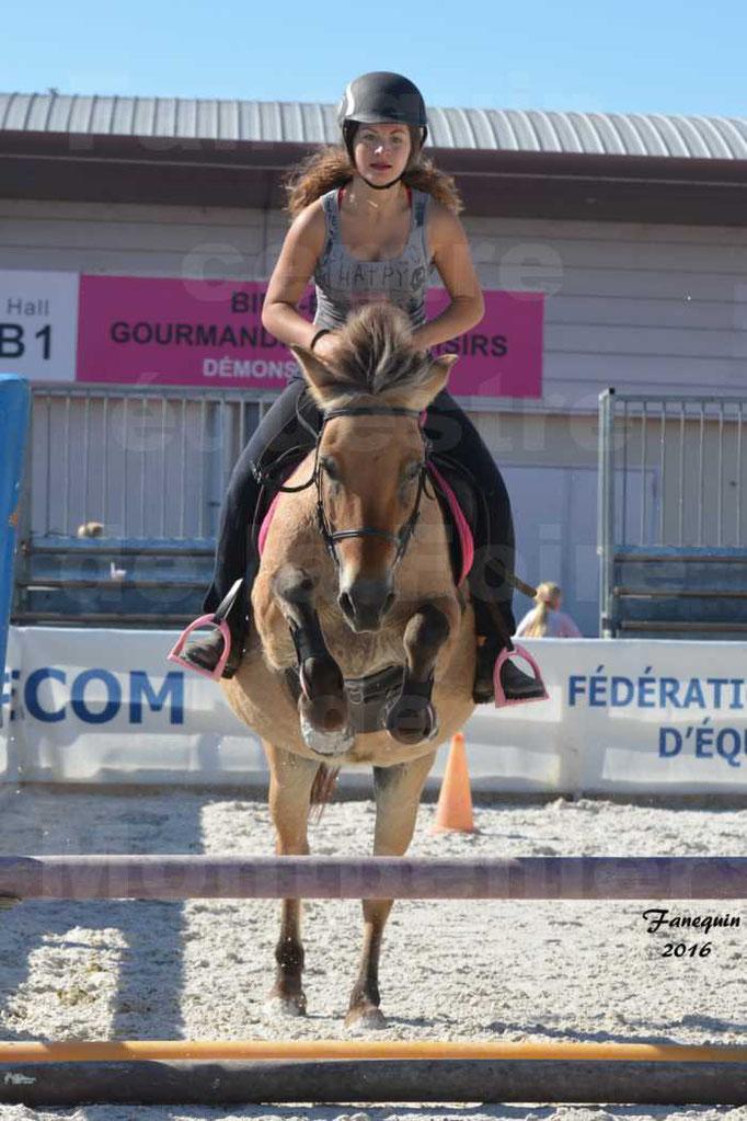 """Centre équestre éphémère de la Foire de Montpellier 2016 - saut d'obstacle cavalière """"l'Hacienda"""""""