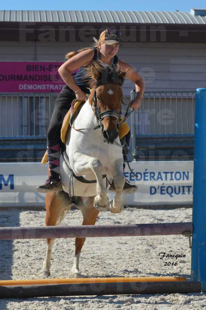 Centre équestre éphémère de la Foire de Montpellier 2016 - saut d'obstacle cavalière clos d'Alice