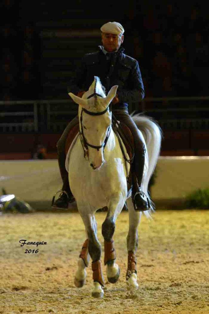 Cheval Passion 2016 - Présentation des LUSITANIENS - 070