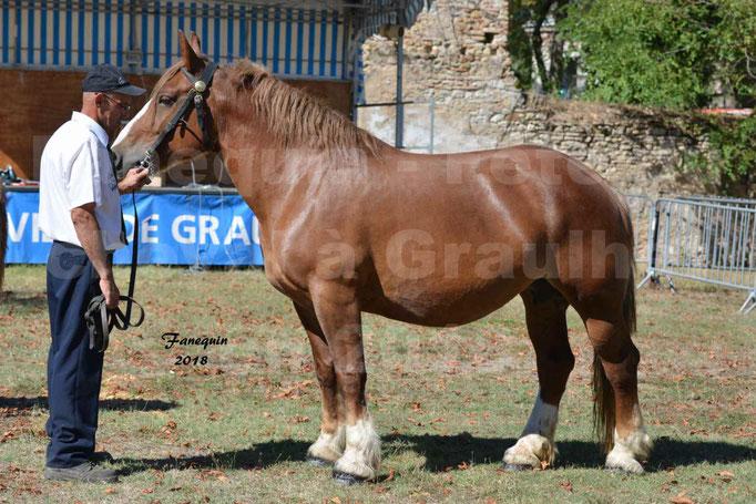 Fête du cheval à GRAULHET le 16 septembre 2018 - Concours Départemental de chevaux de traits - 24