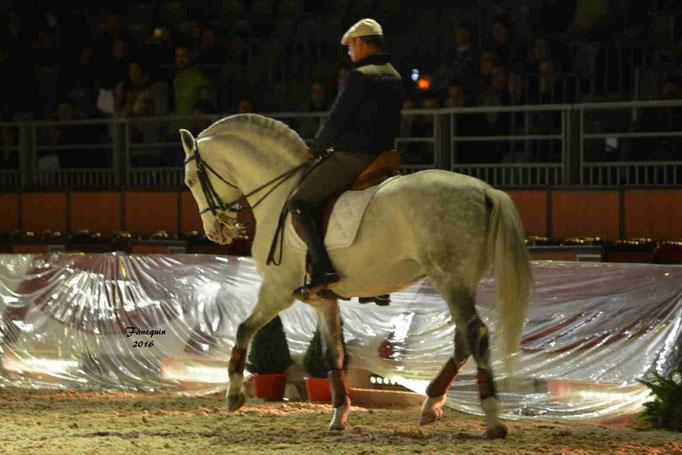Cheval Passion 2016 - Présentation des LUSITANIENS - 059
