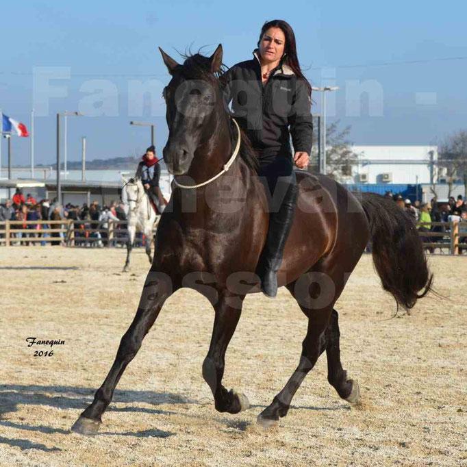 Cheval Passion 2016 - Cavalières