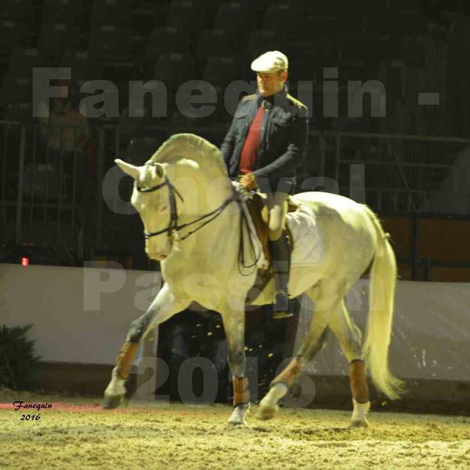 Cheval Passion 2016 - Présentation de LUSITANIENS -