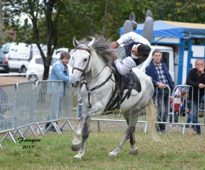 Fête du cheval à Graulhet le 17 septembre 2017 - Démonstration de Voltige équestre - 3