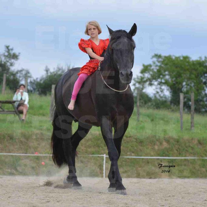 Spectacle de chevaux PRE chez Frédérique VIGNE - 3
