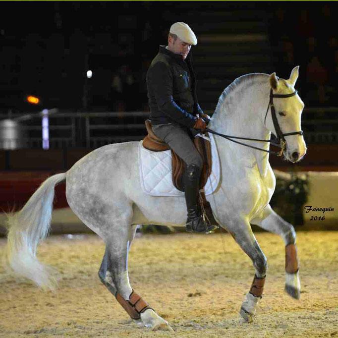 Cheval Passion 2016 - Présentation des LUSITANIENS - 082