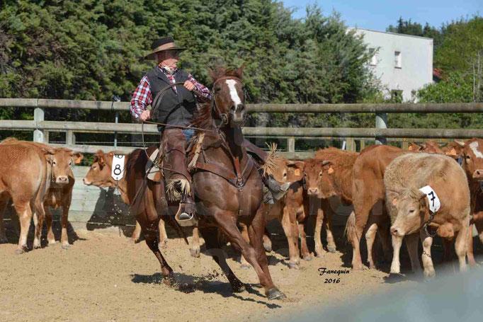 Festival EQUESTRIUM 2016 - Démonstration équitation de travail - cheval WESTERN
