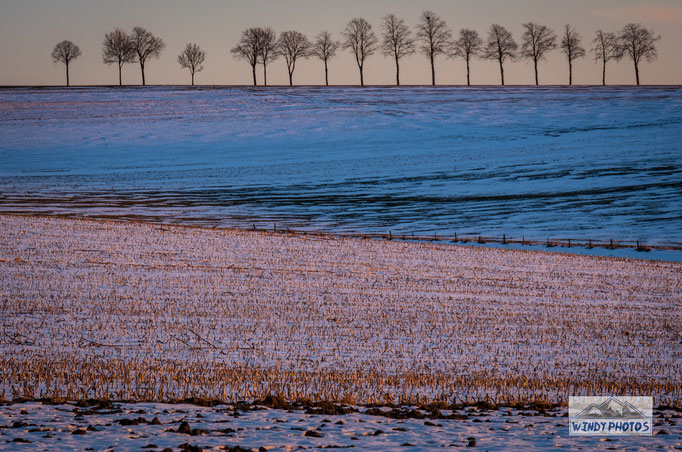 cold temperatures over the fields