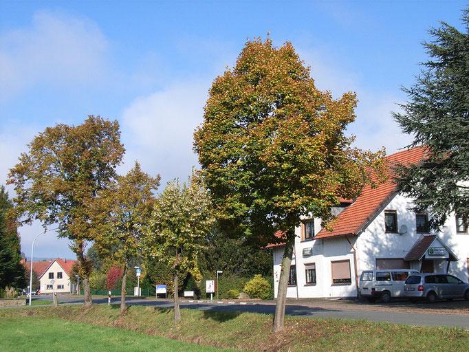 Im Büttendorfer Ortskern