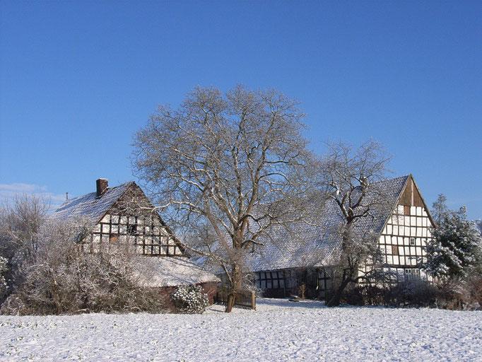 Hof Knefelkamp (ehemalige Dorfschmiede)
