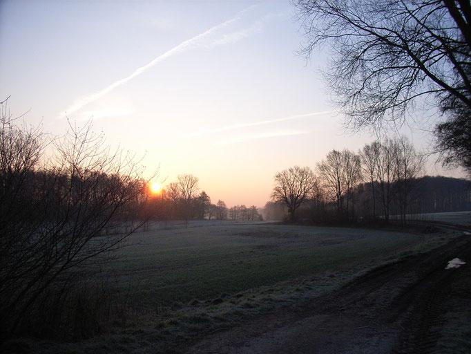Sonnenaufgang über dem Benkhöfener Bruch