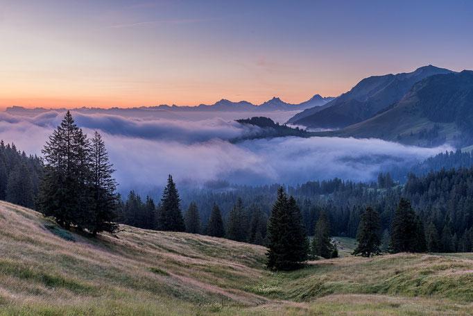 Morgenstimmung Naturpark Gantrisch