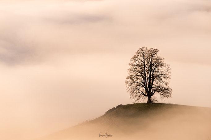142_Nebelmeer