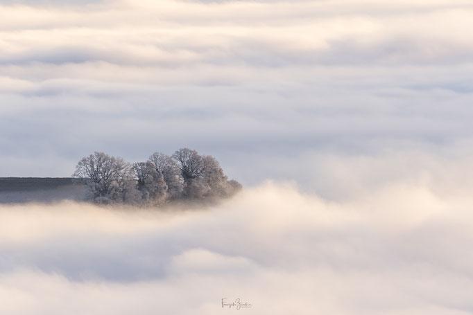 115_Nebelmeer