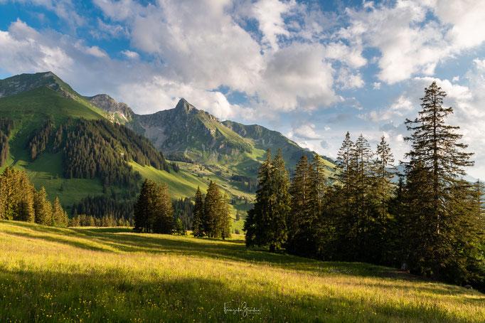 69_Gantrisch Naturpark