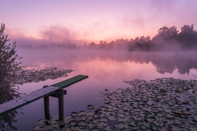 Morgenstimmung Gerzensee