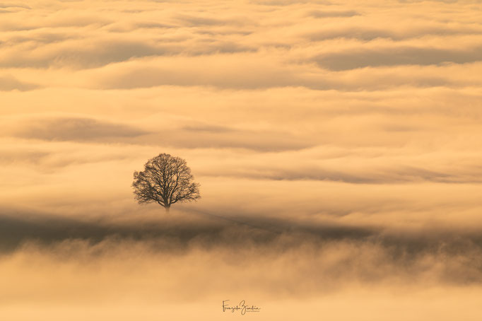 155_Nebelmeer