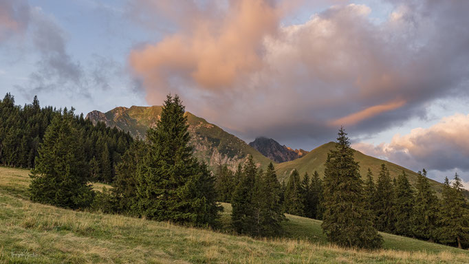 19_Morgenstimmung Gantrisch Naturpark