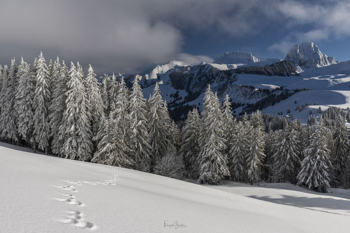 Winterwelt Gantrisch Naturpark