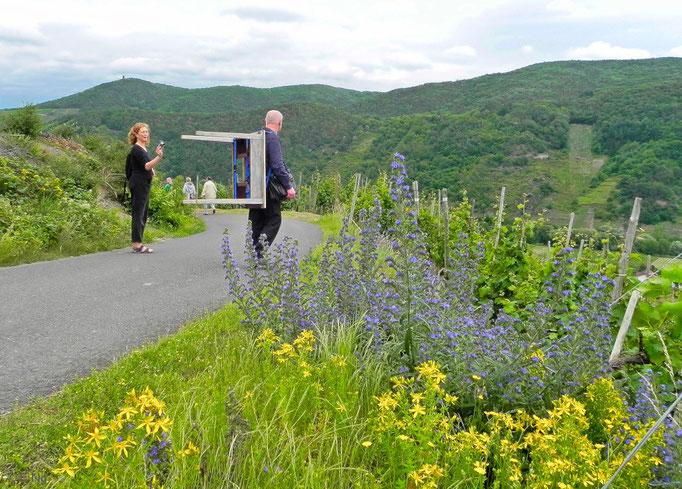 """Wanderung mit dem """"Tischmenschen"""" auf dem Rotweinwanderweg"""