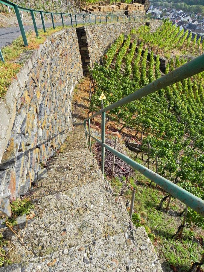 Steile Treppen in den Weinbergen