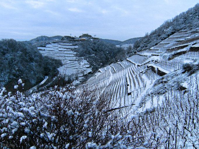 Winterliche Weinberge bei Dernau
