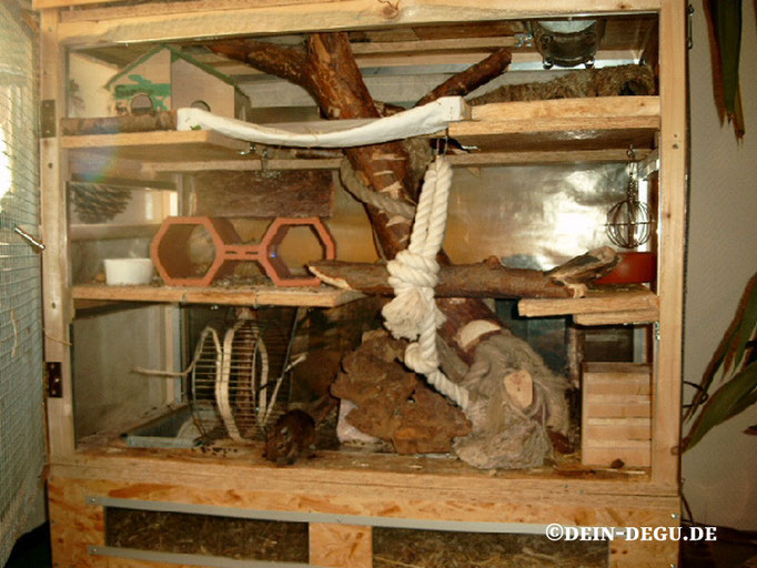 Ehemeliger Käfig, untere Etage