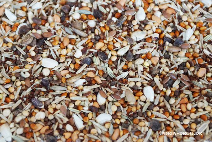 Körnermischung, Sämereien von Kräutern, Gräsern und Sträuchern