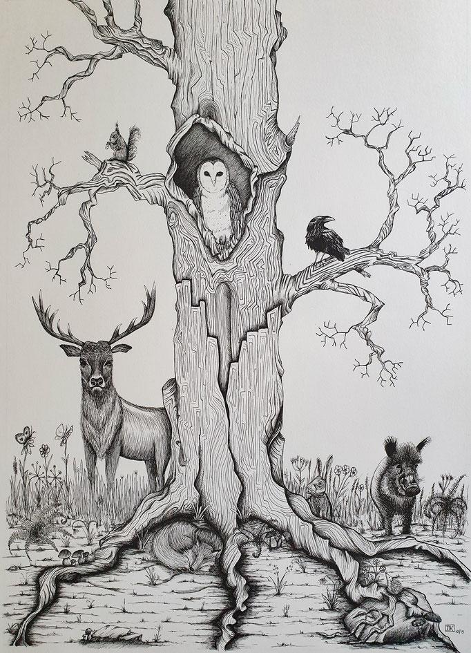 Tiere des Waldes, Tusche-Stift auf Papier, 83x63cm - verkauft