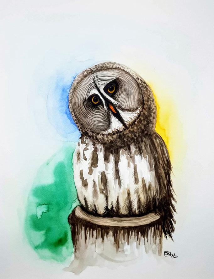 Skeptische Eule / skeptical owl, Aquarell auf Papier, 40x30cm - CHF 280.- (ohne Einrahmung)