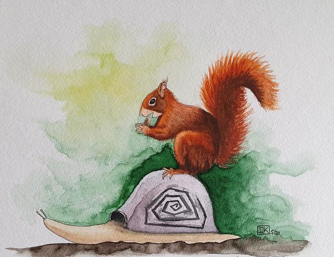 Eichhörnchen, Aquarell auf Papier, 17x22cm - CHF 160.- (ohne Einrahmung)