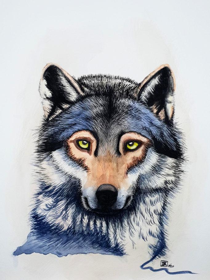 Freundlicher Wolf / friendly Wolf, Aquarell auf Papier, 40x30cm - nur im Shop erhältlich