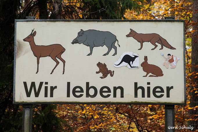 Wesloer-Weg 0001