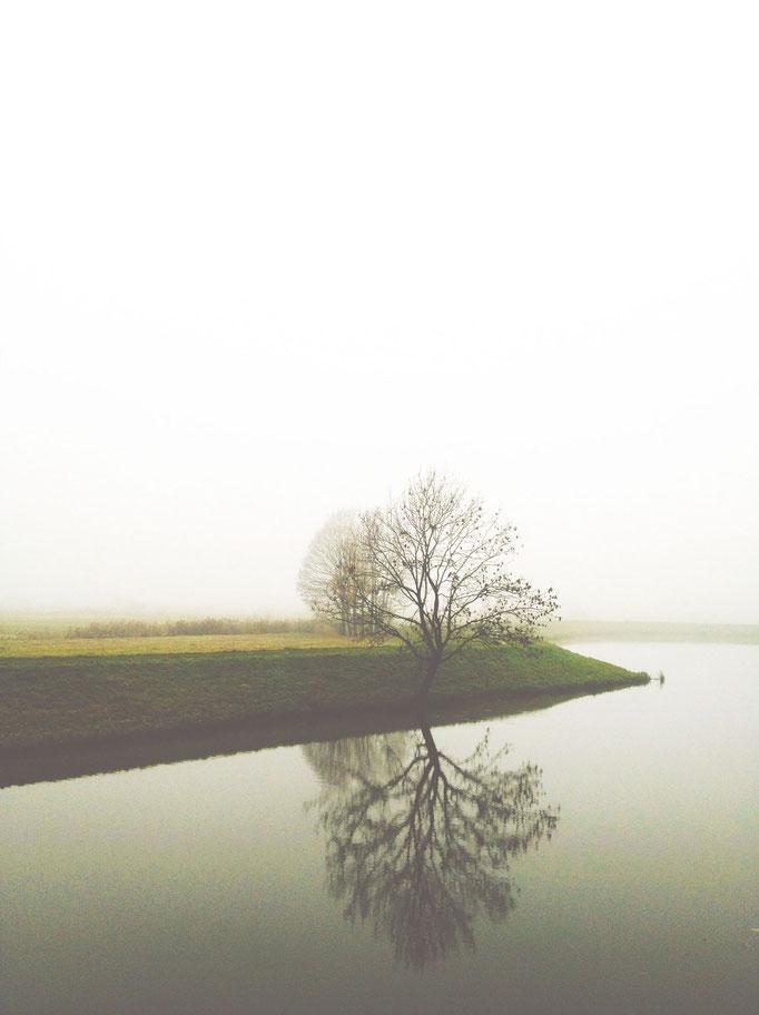 Fog  |  Den Bosch  |  2012