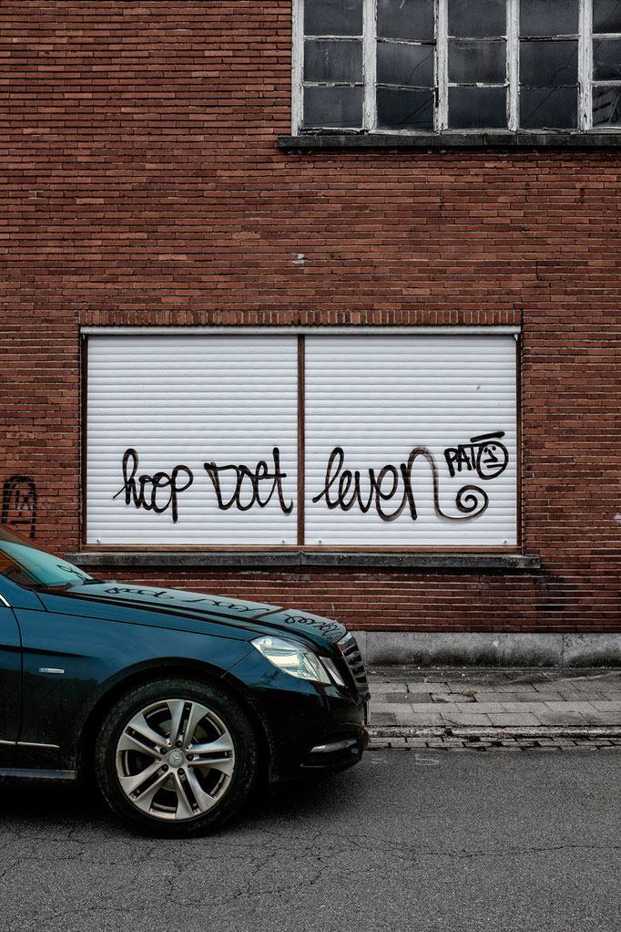 Hope springs eternal  |  Doel  |  2012