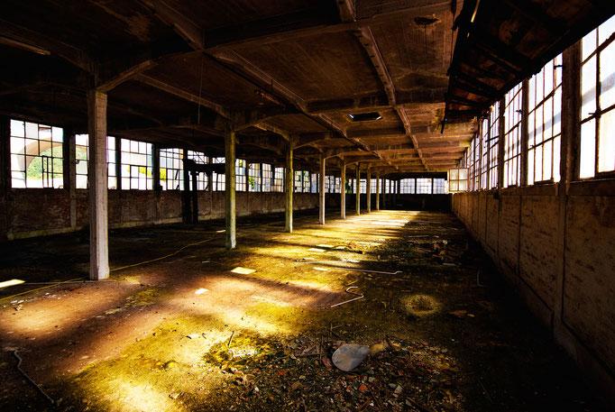 Factory floor  |  Belgium  |  2012
