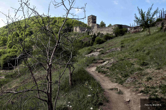 Burg Spitz an der Donau  - Kamera Canon G12