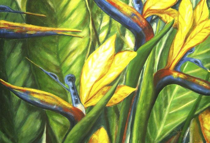 Fleurs de paradis - 100x80 - 2006