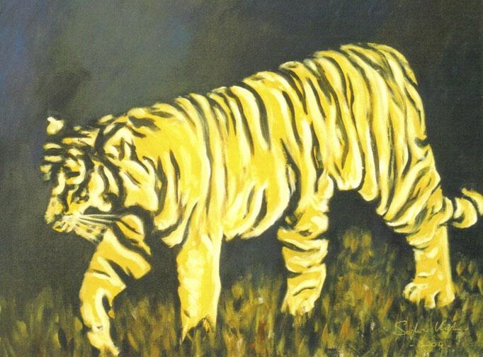 Tigre - 60x80 - 2005