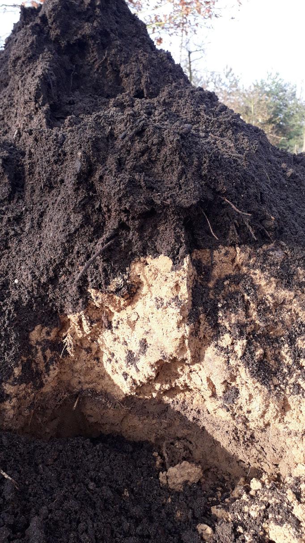 gefüllt wird das Pflanzloch mit einer Mischung aus Kompost- und Tonerde...