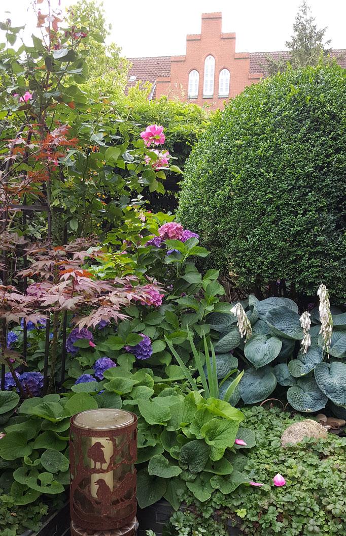 Mein Gartenreich :)