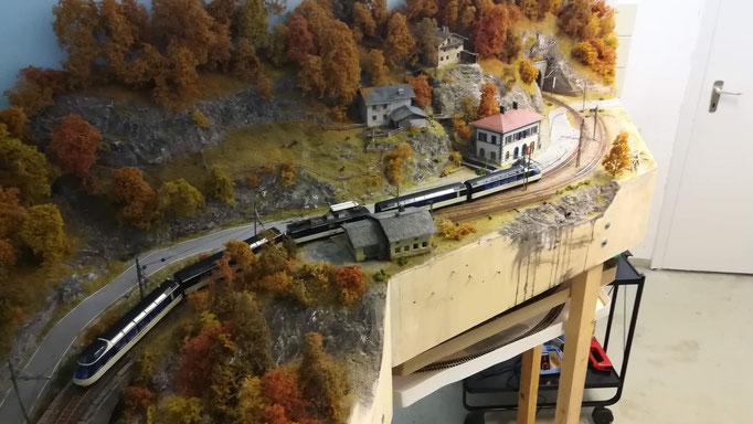 Übersicht von Santa Maggiore mit LagoMaggioreExpress-Zug.