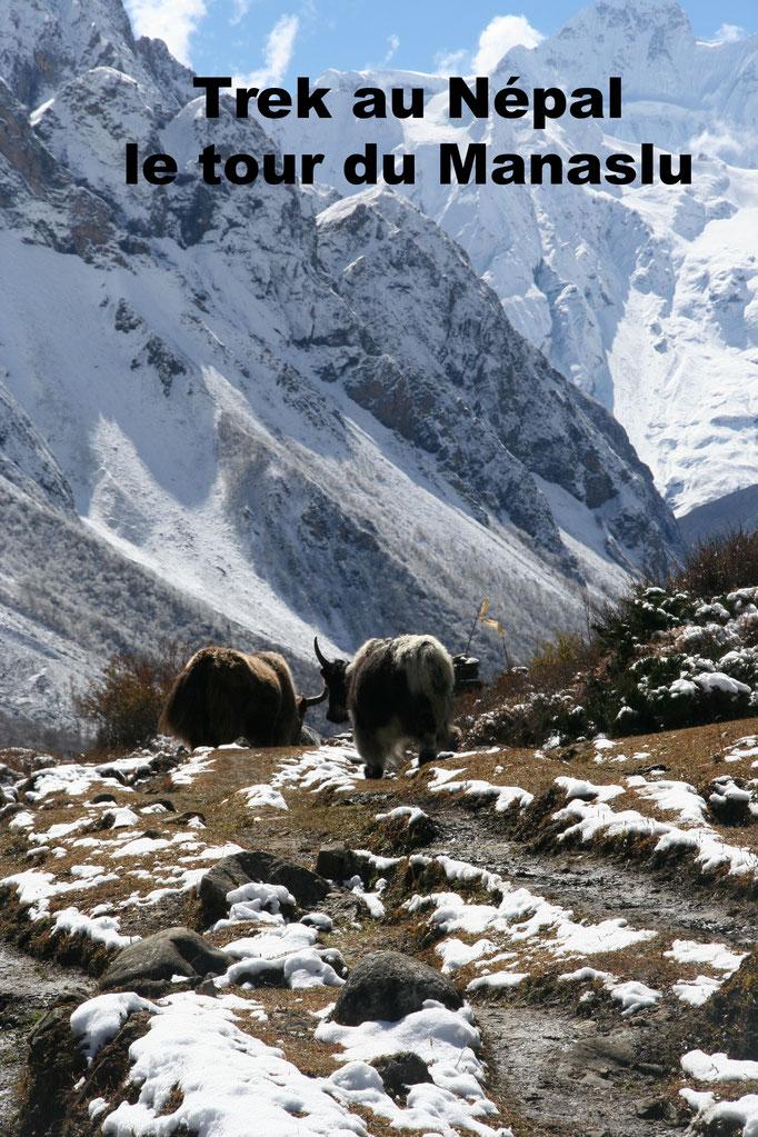 Trek - tour du Manaslu