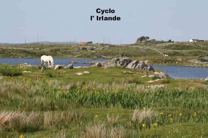 Cyclo : en Irlande