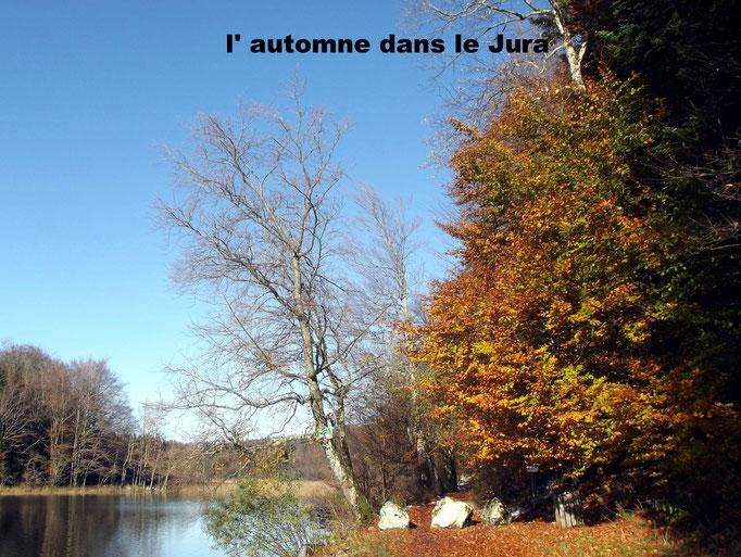 l' automne dans le Jura
