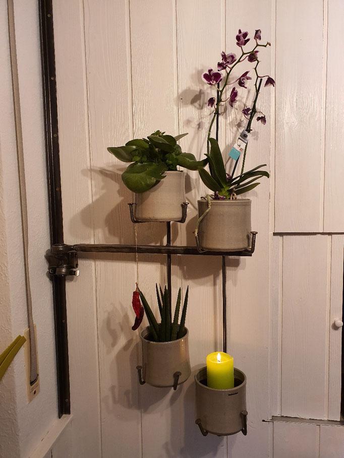 schwenkbarer Blumentopfhalter mit einer Ventilkipphebellagerung als Drehpunkt / grüne Wand in der Küche