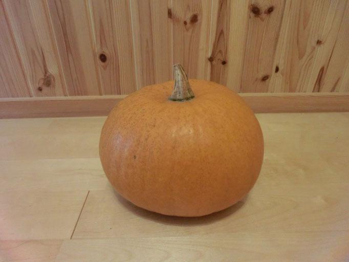 円城の道の駅で偶然みつけました。 円城は、『ハロウィンかぼちゃ』で有名なようです✩